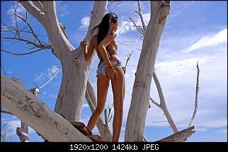 Нажмите на изображение для увеличения Название: 0759.jpg Просмотров: 18 Размер:1.39 Мб ID:55436