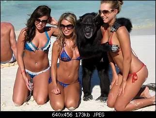 Нажмите на изображение для увеличения Название: erotic_pricoli202.jpg Просмотров: 52 Размер:173.4 Кб ID:6449